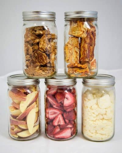 Various freeze dried foods