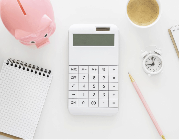 Disaster Preparedness For Your Finances: The Ultimate Guide